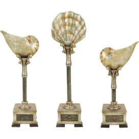 3 Piece Essex Seashell Décor Set