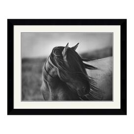 Fierce Grace Framed Print