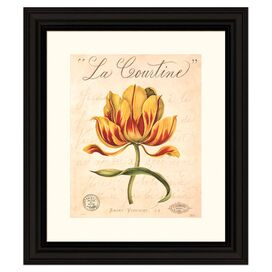 La Courtine Framed Print