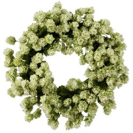 Faux Hops Wreath in Green
