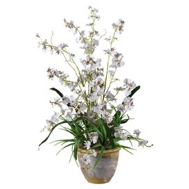 Faux Potted Dancing Lady Orchid in White