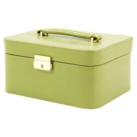 Poppy Leather Jewelry Case in Lime