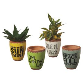 4-Piece Green Thumb Pot