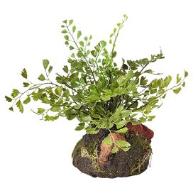 Faux Maidenhair Fern Plant