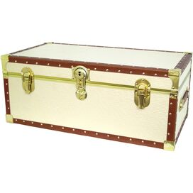 Brighton Storage Trunk