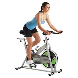 LifeSpan Indoor Bike