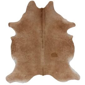 Tempe Cowhide 5' x 7' Rug in Natural