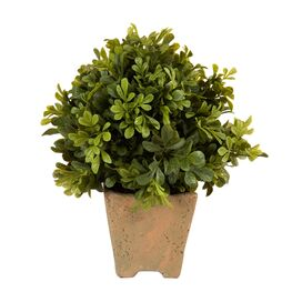 Faux Boxwood Topiary II
