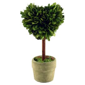 Preserved Boxwood Topiary I