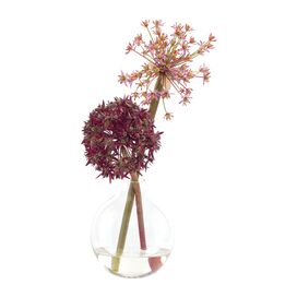 Natural Decorations Inc. Faux Allium Arrangement