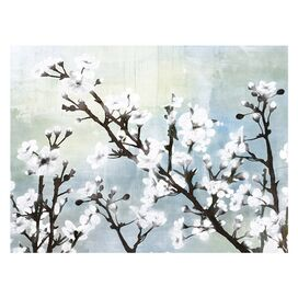 Cherry Blossoms Canvas Giclee Print