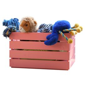 Nantucket Outdoor Toy Box in Coral