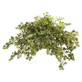 New Growth Designs Faux Potted Maidenhair Fern