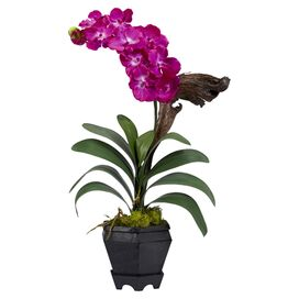 Faux Potted Vanda Orchid I