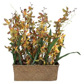 Faux Potted Orchid Centerpiece II