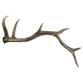 Bradford Antler Decor