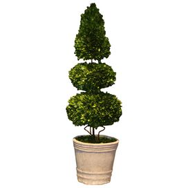 "Preserved Boxwood 40"" Tiered Topiary"