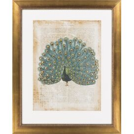 Proud Peacock Framed Print