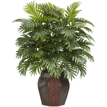 Silk Areca Palm