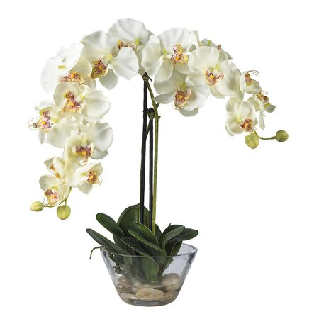 Silk Orchid Arrangement