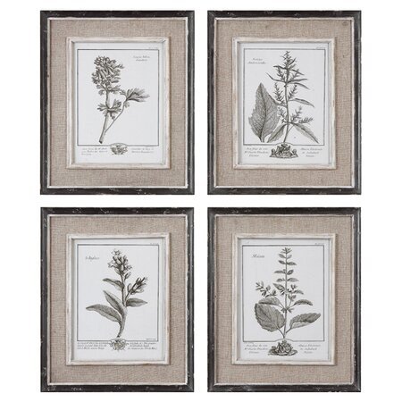 Botanical Framed Print (Set of 4)