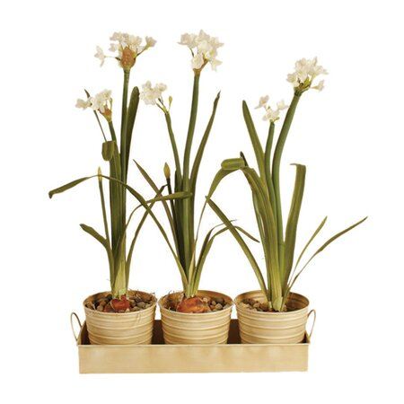 4 Piece Brighton Planter Set