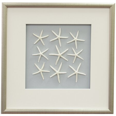 Starfish II Framed Wall Decor